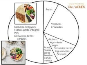 dieta_tipo - copia