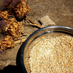 Cereales y granos integrales sin gluten