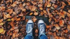 Macrobiótica para el otoño y el elemento metal