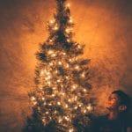 Menús macrobióticos para Navidad