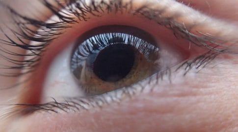 Diagnóstico por el iris